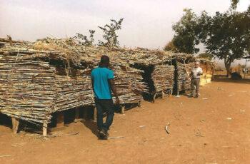 Costruiamo una scuola in Camerun